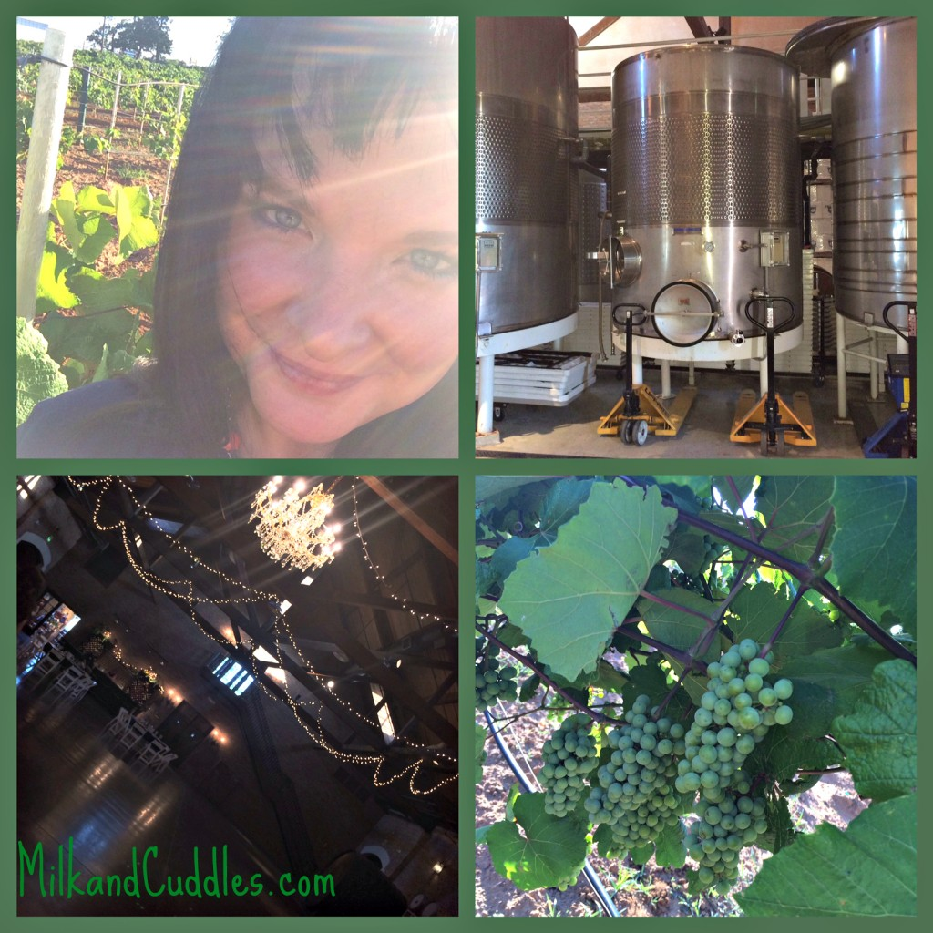 Deleny Winery