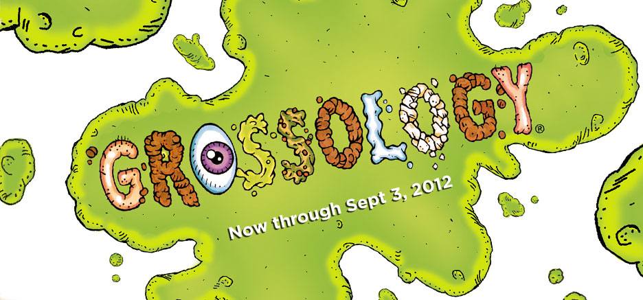 """Review of """"Grossology"""" at Ft. Worth Science & History Museum"""