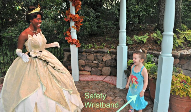 Theme Park Safety – A few Tips