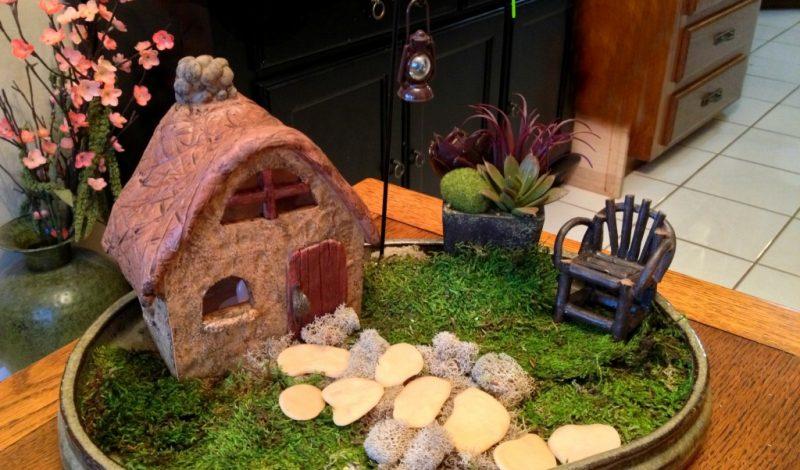 Make a Leprechaun Garden!