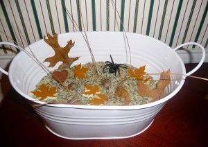 A Toddler Activity: Sensory Tub for Fall
