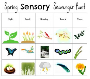 sensory scavenger hunt