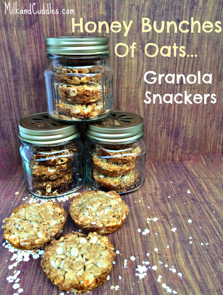 Granola Snackers recipe