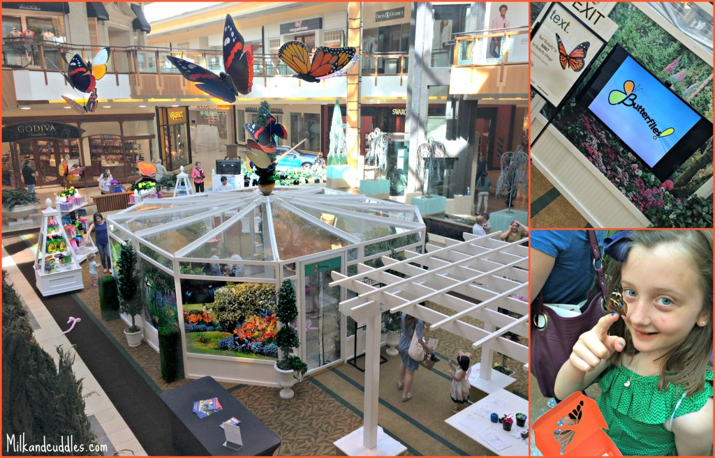 shops at Willow Bend Butterfly