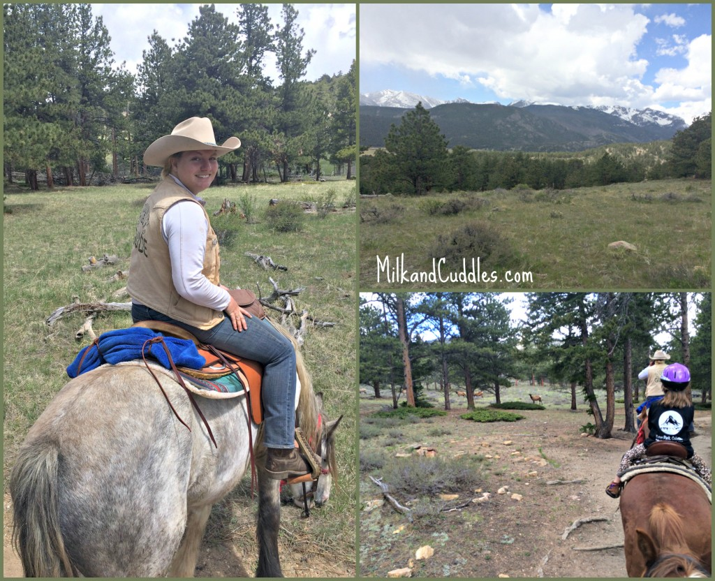 Horse Back riding in Rocky Mountain national Park