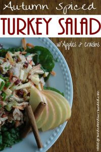 autumn-spiced-turkey-salad-www-groundedandsurrounded