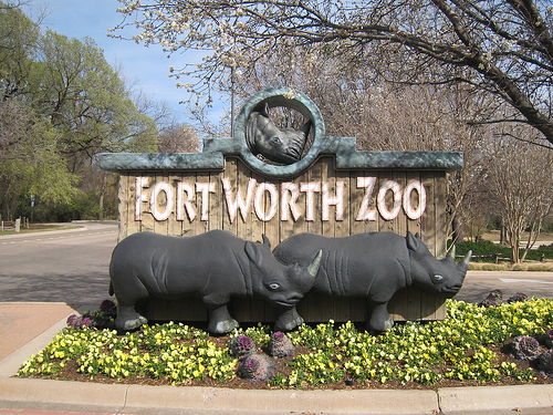 Day Trip To: The Fort Worth Zoo