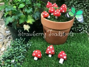 Edible Strawberry Toadstools