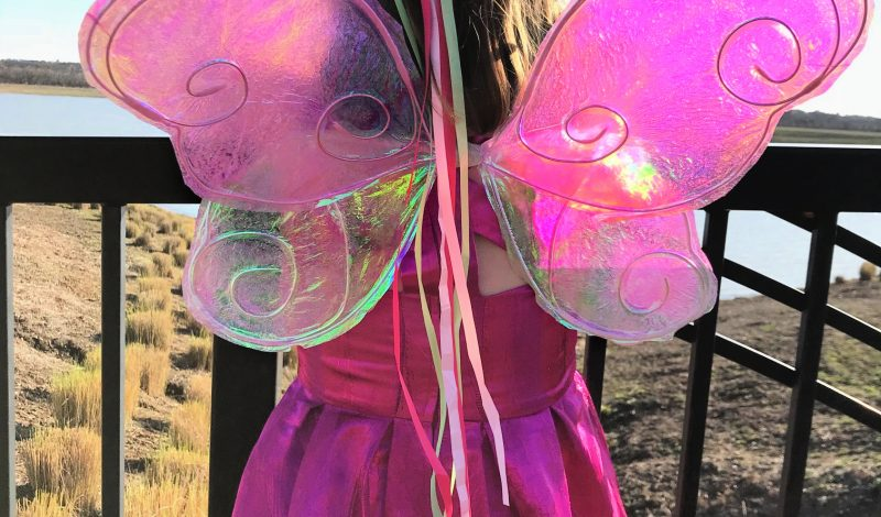 Easy to Make Cellophane Fairy Wings
