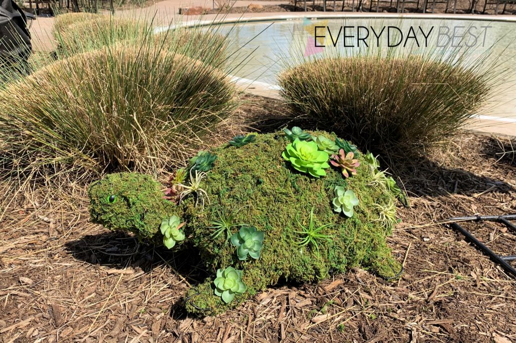 How To Make A Succulent Topiary For Your Garden Everyday Best