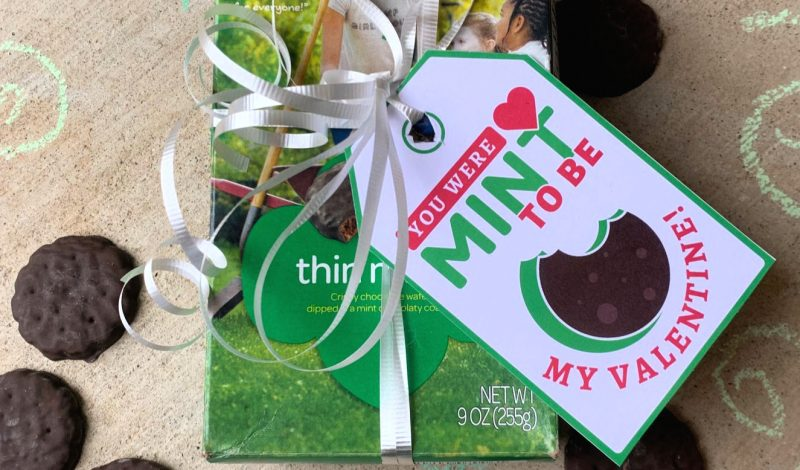 Free Valentine Printables – Perfect for Girl Scout Cookie Season!